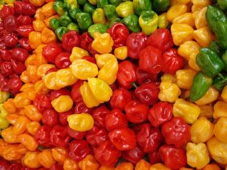 habanero-pepper-534x400-u5603-fr